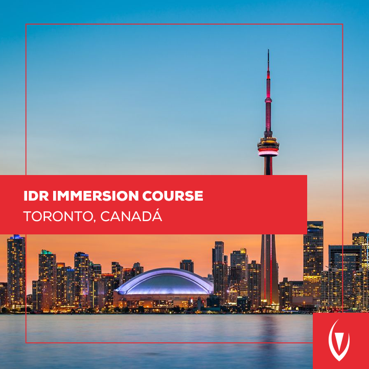 IDR Immersion Course